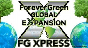 FG global expansion